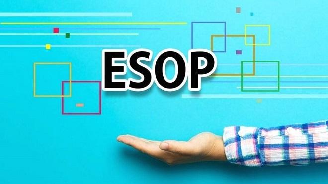 Vì sao doanh nghiệp phát thưởng cổ phiếu Esop?