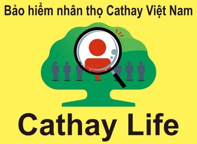 Bảo hiểm nhân thọ Cathay Life Việt Nam