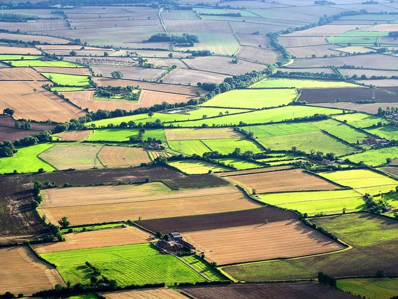 Vay thế chấp bằng đất Nông nghiệp cần lưu ý gì?