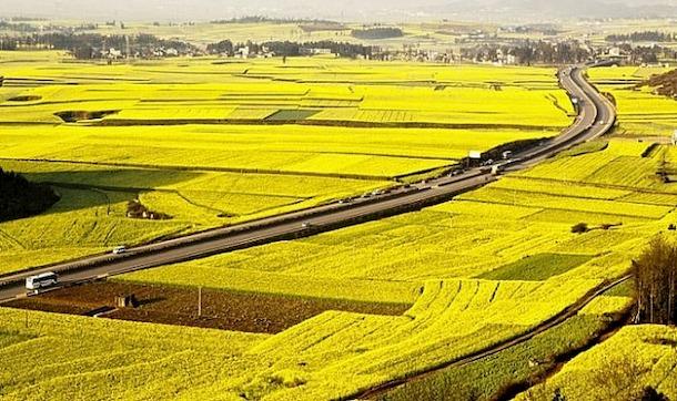 Đất nông nghiệp có vay thế chấp được không?