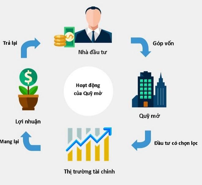 Hoạt động của chứng chỉ quỹ qua công ty quản lý