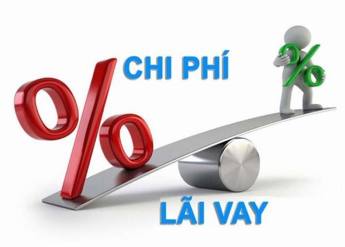 Tỷ lệ thanh toán lãi vay được tính trên tỷ lệ nợ và tỷ suất sinh lời